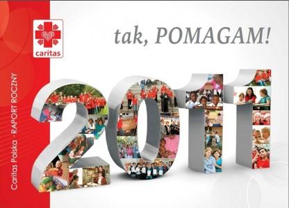 raport 2011
